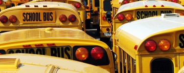 many school buses